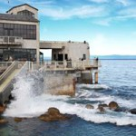 Monterey Bay Aquarium near Luxurious Yanks RV Resort Greenfield CA
